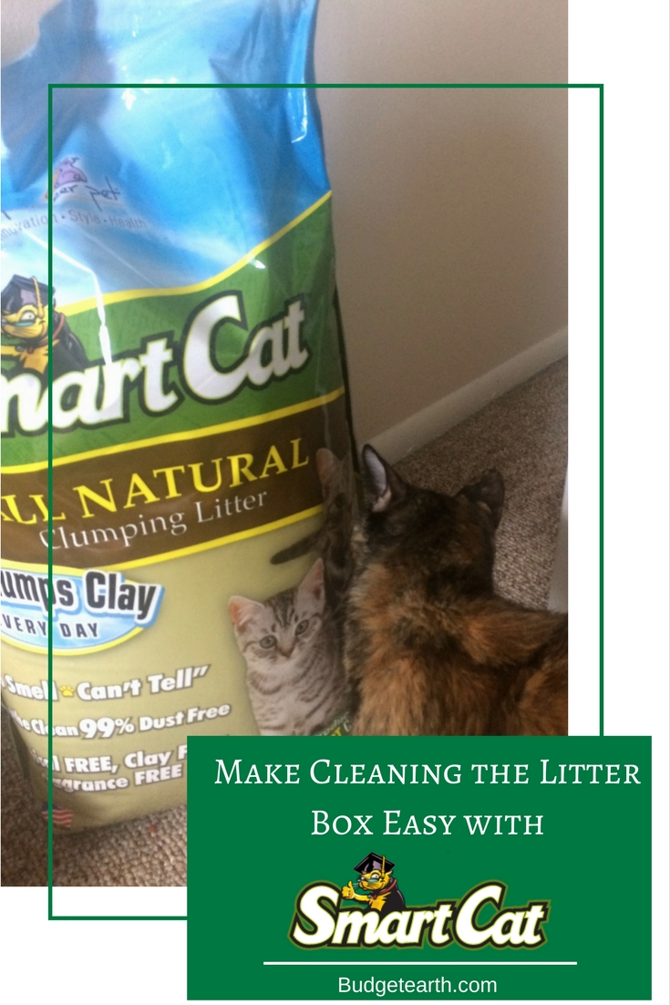 Make Cleaning the Litter Box Easy with SmartCat All Natural Litter