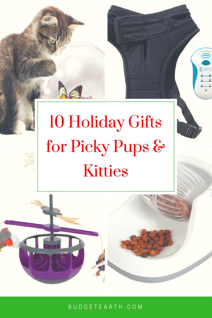 Looking for a fun gift for a pup or kitty that has everything? Check out our choice of 10 amazing toys & accessories for dogs & cats here!