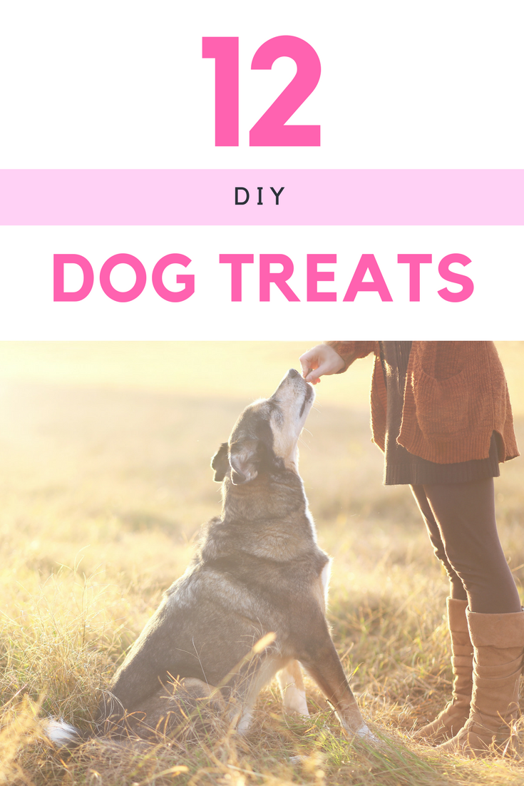 Are you looking for some awesome dog treats for your favorite pup that you can make at home? Check out these 12 DIY Dog Treat Recipes here!