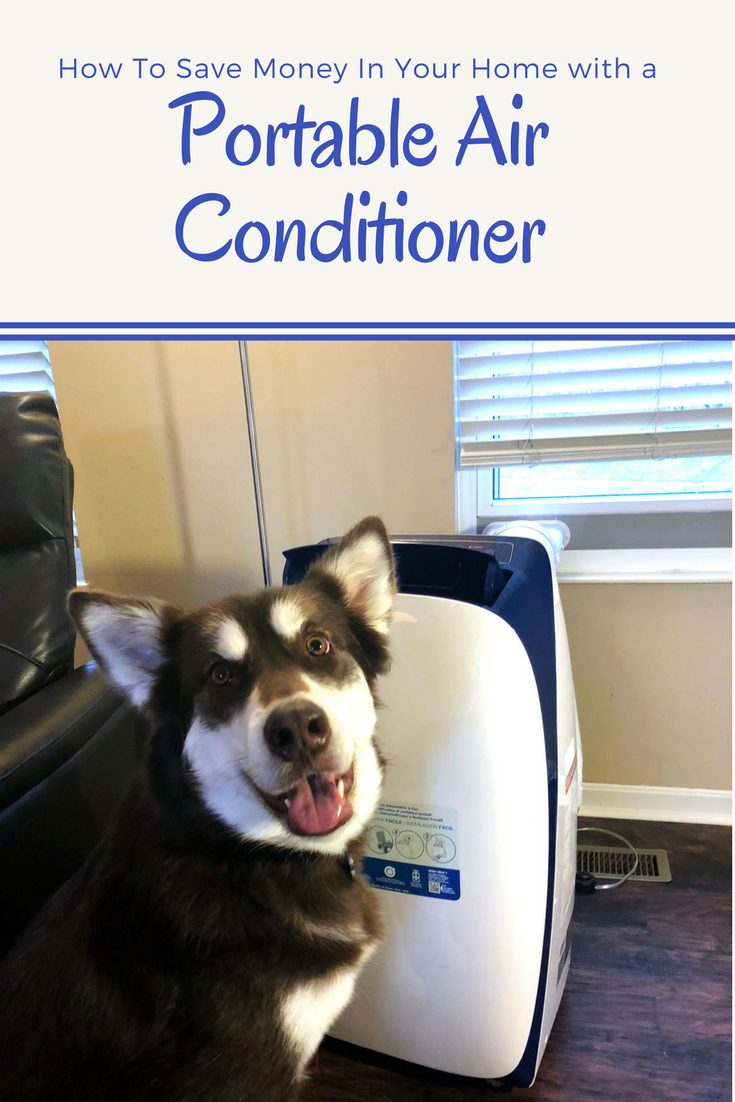 red alaksan malamute standing next to a Honeywell portable air conditioner