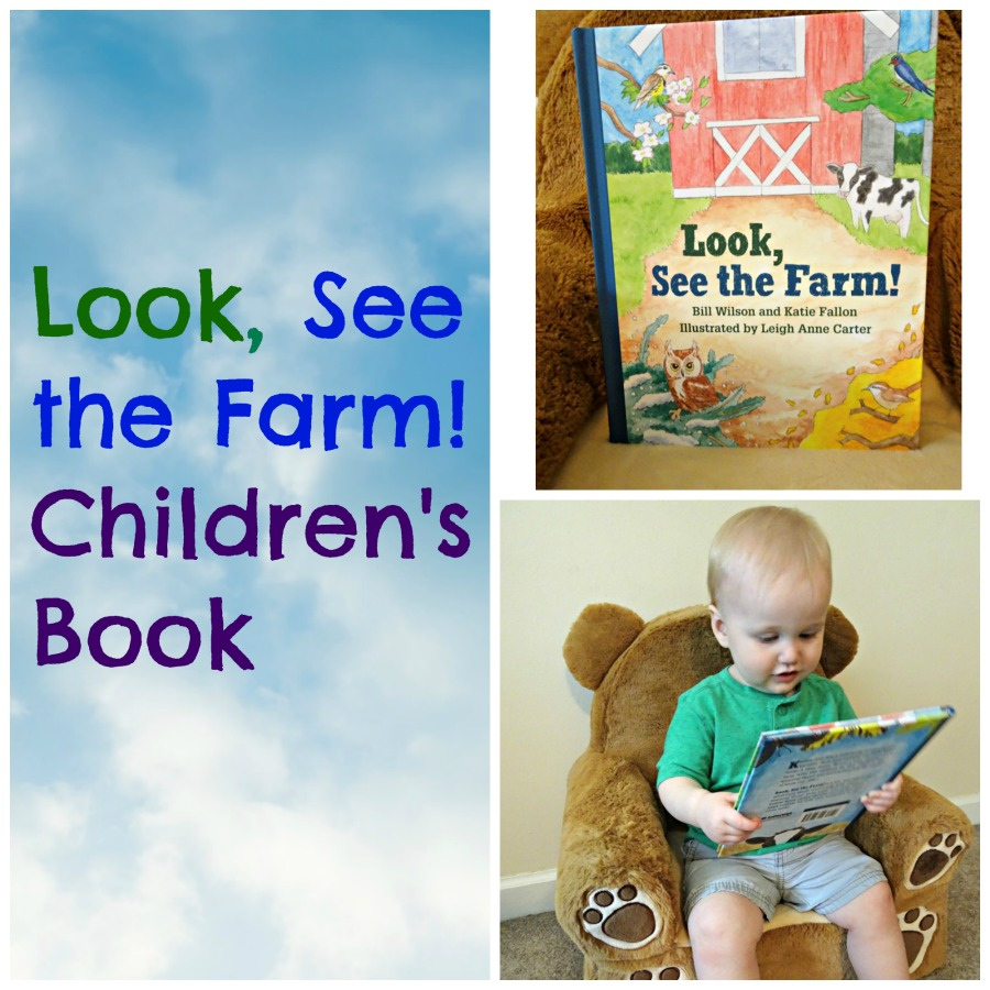 Look, See the Farm! Children's Book Review
