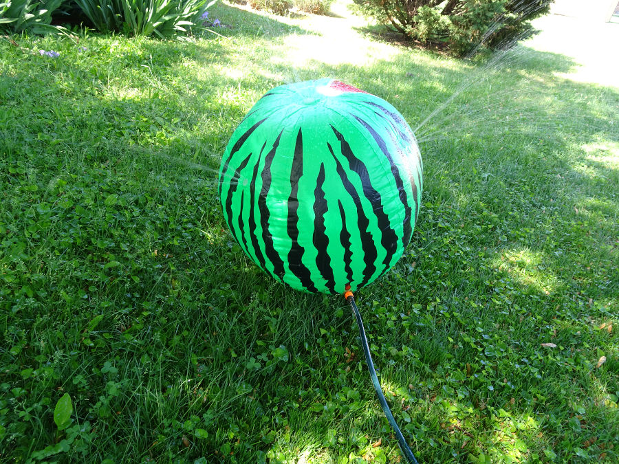 Mega Melon Sprinkler