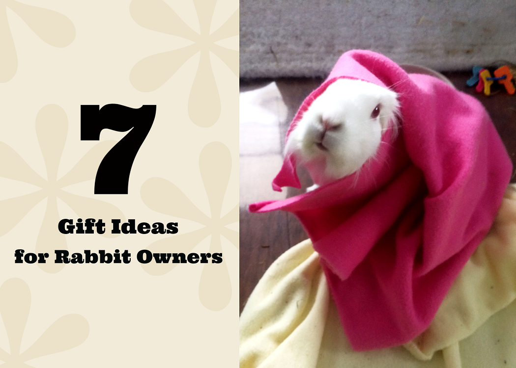 Unsure of what to get your favorite bunny owner? Check out these seven fun gift ideas for rabbit owners here!