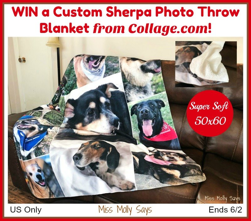 Want to add a personal touch to your living room or bedroom? Enter to win a custom sherpa photo throw blanket from Collage.com here!
