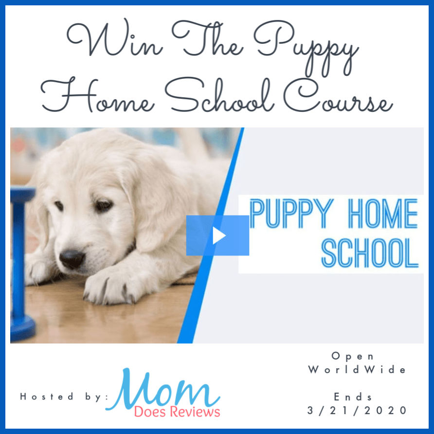 Want to save yourself time and money while training your new puppy? Enter to win The Dog Coach's Puppy Home School Online Course here!