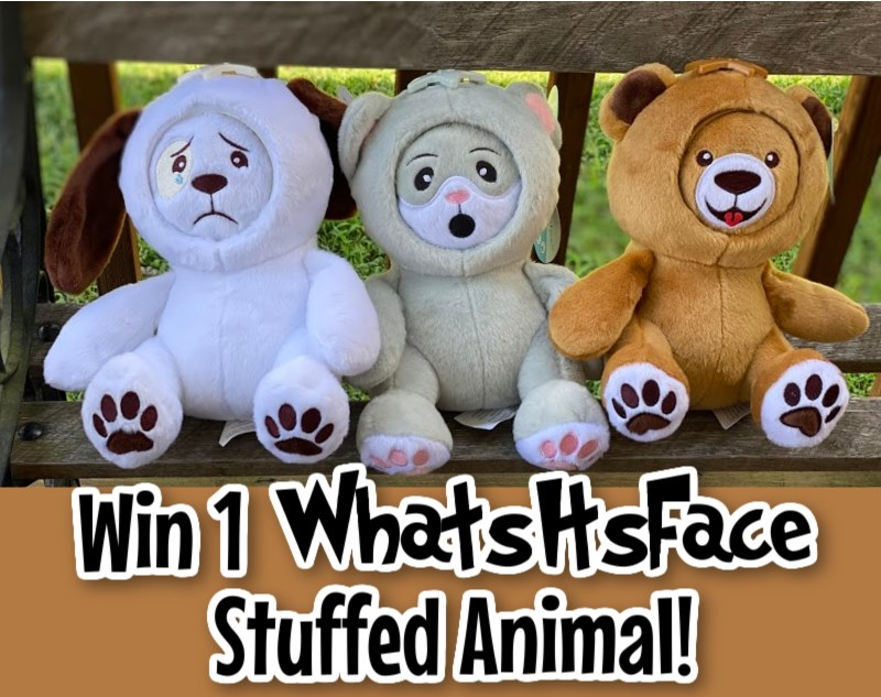 Looking for a fun way to play with your child? Enter to win a Whatsitsface stuffed animal here!