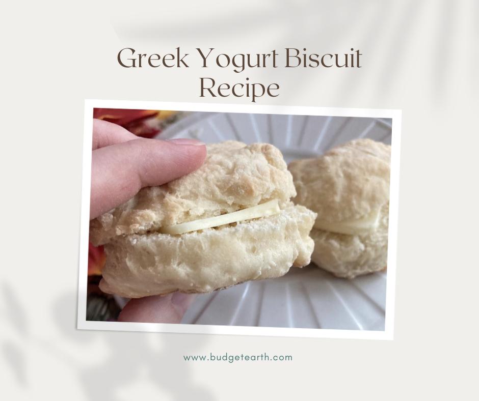 Low Calorie Greek Yogurt Biscuit Recipe Budget Earth