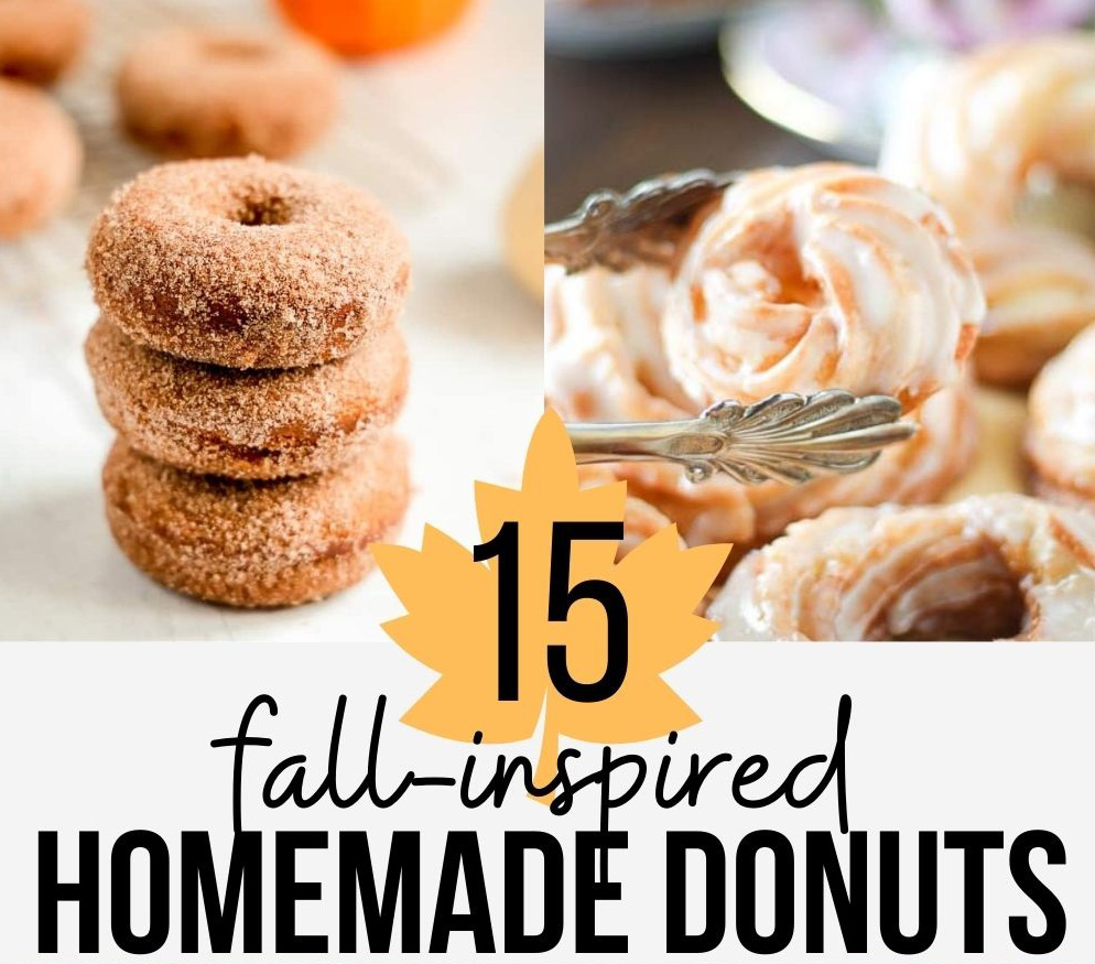 homemade donut recipes featuring pumpkin and other fall themed ingredients